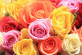 Mixed rose bouquet Royalty Free Stock Photo