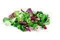 Mixed salad leaves  frisee, radicchio and lamb's lettuce. Isolated on white background Royalty Free Stock Photo