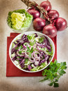 Mixed salad with red cabbage Royalty Free Stock Photography
