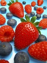 Mixed Summer Berries Fruit Royalty Free Stock Photo