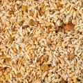 Mixed wheat sprouts, raisins and sunflower seeds Royalty Free Stock Photo
