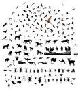 Mixed wild animal silhouettes set Royalty Free Stock Photo