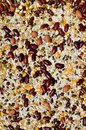 A mixture of grains Royalty Free Stock Photo