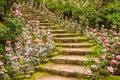 Miyajima, Japan Temple Grounds Royalty Free Stock Photo