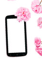 Mobil smart phone surrounded by pink cherry flowers isolated on white background Royalty Free Stock Photos