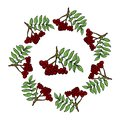 Wreath of ashberry