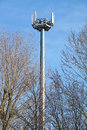 Mobile pole behind tree with blue sky back ground ,technology can coexist the environment Royalty Free Stock Photo