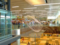 Modern airport terminal in singapore singapore is one of the main aviation hubs in southeast asia handling million Royalty Free Stock Photography