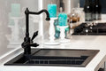 Modern black kitchen sink and faucet Royalty Free Stock Photo