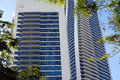 Modern building framed by trees structures tree foliage queensland australia Royalty Free Stock Photography