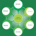 Modern business chart with green circle.