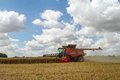 Modern case combine harvester cutting crops corn wheat barley rape oilseed working field with cloudy sky Royalty Free Stock Photos