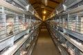 Modern chicken coop farm Royalty Free Stock Photo