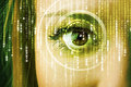 Modern cyber woman with matrix eye Royalty Free Stock Photo