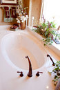 Modern elegant bathtub Royalty Free Stock Photo