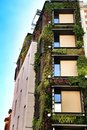 Modern facade with vertical garden in Madrid Royalty Free Stock Photo