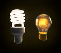 A modern fluorescent and vintage incandescent light bulb side by green energy Royalty Free Stock Photos