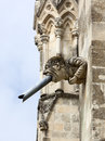 Modern gargoyle at Chichester Cathedral, West Sussex, England Royalty Free Stock Photo