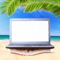 Modern laptop under palm tree Royalty Free Stock Photo