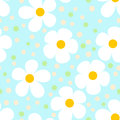 Modern light seamless pattern with camomiles Stock Photos