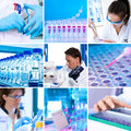 Modern research environment, collage Royalty Free Stock Photography