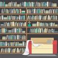 Modern Sofa With Huge Bookshelf. Royalty Free Stock Photo