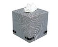 Modern tissue boxed isolate on white with clipping path Royalty Free Stock Image