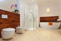 Modern warm bathroom spacious with sower and bath Royalty Free Stock Image