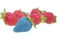Modified food - strawberry