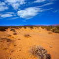 Mohave desert in california yucca valley usa Stock Photos