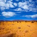 Mohave desert in california yucca valley usa Stock Photo