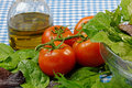 Moisture covered salad leaves tomatoes blue gingham tablecloth Royalty Free Stock Photo