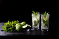Mojito traditional summer refreshing cocktail alcohol drink in glass, bar preparation soda water beverage, lime juice Royalty Free Stock Photo