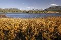 Molas lake and Needle mountains, Weminuche wilderness, Colorado Royalty Free Stock Photo