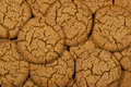 Molasses Cookies Royalty Free Stock Photo