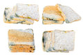 Mold on bread expired isolated Royalty Free Stock Photo