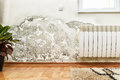 Mold and moisture buildup on wall of a modern house damage caused by damp in Stock Photos