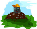 Mole with a cap on molehill small glass and the meadow Royalty Free Stock Images