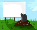 Mole on molehill looking at a billboard small signboard advertisement advertising Royalty Free Stock Images