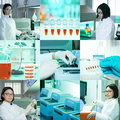 Molecular biology collage pcr and professional oriental researcher Royalty Free Stock Photos