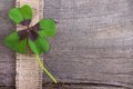 Moments of happiness stock photo with four leaf clovers wooden background leaves Royalty Free Stock Photos