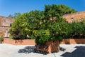 The Monastery of Agia Triada in Crete, Greece Royalty Free Stock Photo