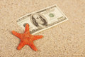 Money american hundred dollar bills in sand and red orange star fish