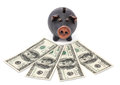 Money and black piggy bank Stock Photos