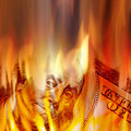 Money Burning in Flames Royalty Free Stock Photo