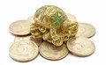 Money Coins with Turtle Royalty Free Stock Photo