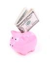 Money dollar bills and piggy bank Royalty Free Stock Photo