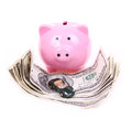 Money dollar bills, piggy bank and car toy Royalty Free Stock Photo