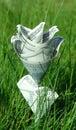 Money flower in green grass
