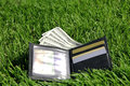 Money in grass Royalty Free Stock Photo